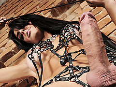 Look out all you Mistresses of the dark because Viviany is now on the scene, and this dark and sensual shemale is fucking amazing.  She is a devilish angel with a crop and she can pleasure her own thi from TS Kink
