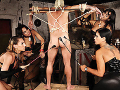Shemale Mistresses Aline, Jo, Kawanna, and Mylena have their slave suspended from the ceiling by rope and he is standing on a platform made for punishment. They use crops and spreaders on this poor co from Shemale Punishers