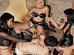 These shemale dommes know exactly how to treat a submissive man. Watch as they..