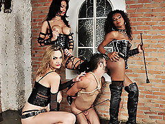 Three spectacular ts dommes are in bdsm action today. Watch the boss bitches Adelaide Novaes, Cybelli Calmon and Jennifer Satine take control of their submissive slave. These three take turns wrecking from Shemale Punishers