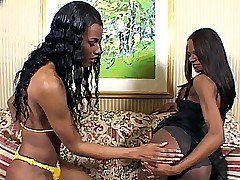 Ebony Shemales Teasing from Shemale Thrills