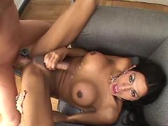 Brunette shemale cums after fuck from sexmv.com
