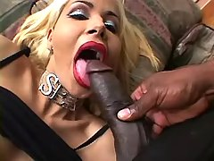Tranny throats huge chcocolate cock from shemalehotties.com