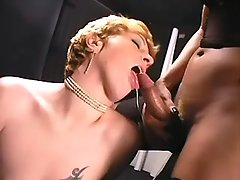 Whore gets cumload in shemales orgy from shemalehotties.com