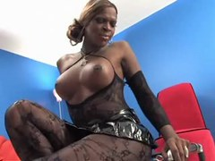 Big black tranny in stockings poses from thebestshemales.com