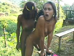 Hot latin shemale fucking shemale from freetrannyxxx.com