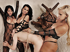 Kinky Tranny Trio Dominates from Shemale Punishers