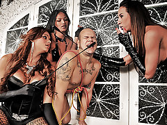 Hot and Kinky Shemale Domination from Shemale Punishers